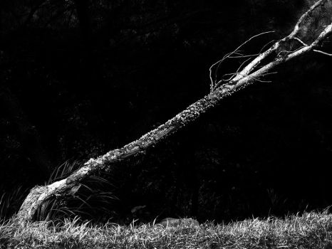 Leaning for survival by PansaSunavee