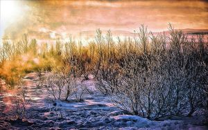 Surreal Sunrise by montag451