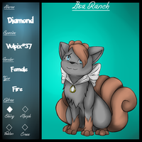 Pkmnation Ref-Diamond by AllegedSketches