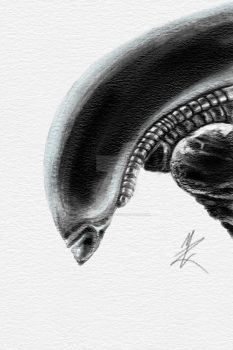 Xenomorph by Thors-Hammer77