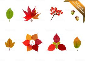 Fall Leaves Sample Vector Pack by Vecteezy