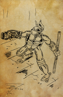 OLD SKETCHBOOK - TMNT Comic Boards - 03 by VR-Robotica