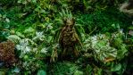 Forest creature in a Weta exhibition (3) by thebxs
