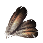 Small Feathers - 10 Crystals by The-Below