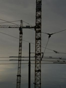 Cranes and Lines II by Gwathiell