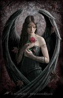 Angel Rose by Ironshod