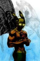 Hawkman by jscott30