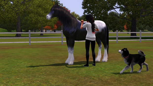 Fun with Sims 3 pets part 6 by Lolalilacs