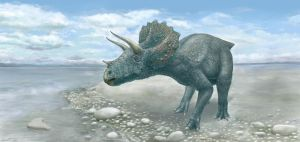 Triceratops by AshiRox