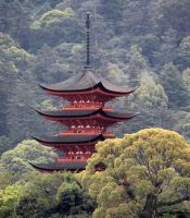 Temple in the Trees by firenze-design