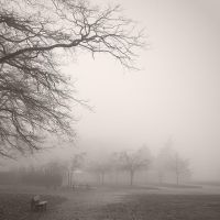 Park of Tronchet - winter by yuushi01