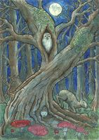 Deep Within the Woods by Odinns-Grove