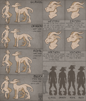 Arcanus Body types and Races by Velkss