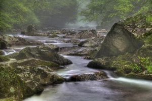 Smoky Mountain Tranquility by Recalibration