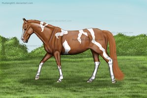 Chestnut Tobiano by Mustang601