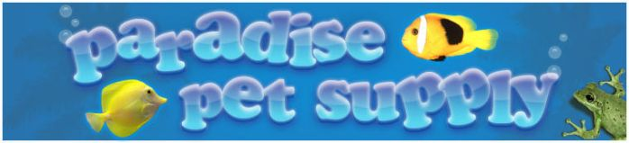 Paradise Pets banner by influenceddesign