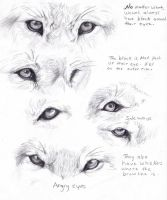 Wolf eyes by AdothWolf
