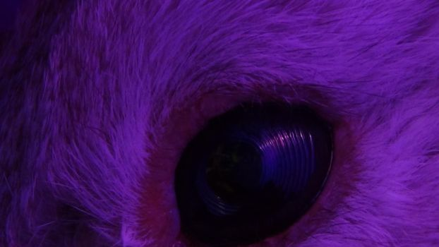 In The Eye by PacificsMajicKohl