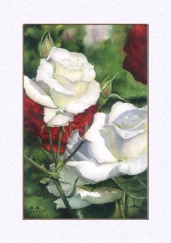 2017-03-12  Red roses and white roses by jackfox2008