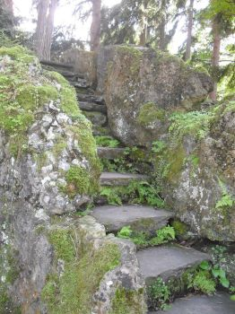 Stone Stairs by KnivesMillions-Plant