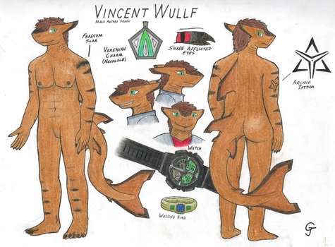 Vincent Wullf: 2017 Reference by Vincent-Wullf