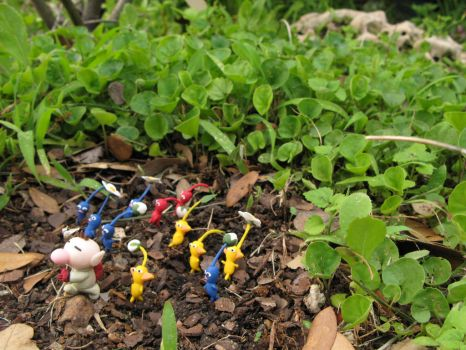 The Pikmin Army is Growing... by Rutela