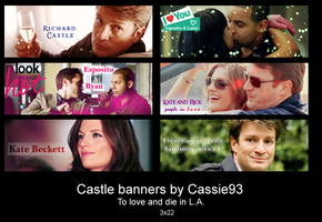 Castle banners 01 by cassie93