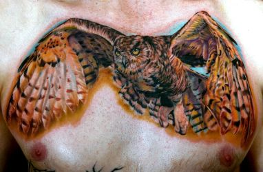 full chest owl by tat2istcecil