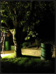 Garden At Midnight by slaute