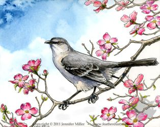 Mockingbird and Dogwood by Nambroth