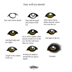 Easy wolf eye turtorial by snorgolwolks