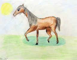 by Nini Li - age 10 by DH-Students-Gallery