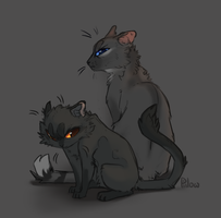 Crowfeather and Breezepelt by GrayPillow