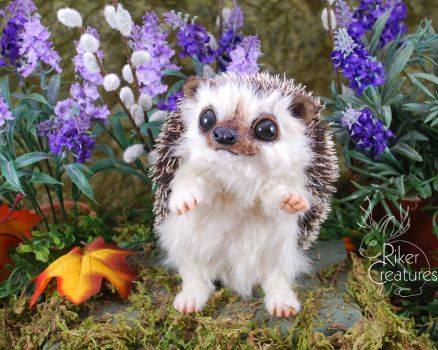 Lavendel the Springtime Hedgehog by RikerCreatures