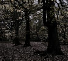 Premade Background  1363 by AshenSorrow