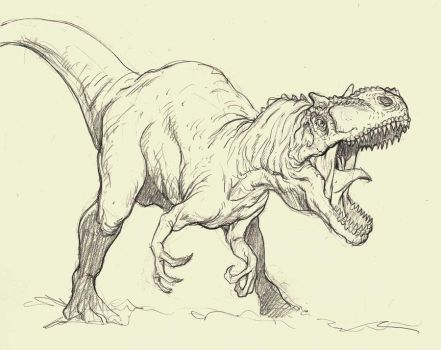 Allosaurus sketch by grobles63