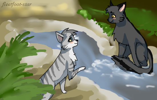 Graystripe and Silverstream by fleetfoot-star