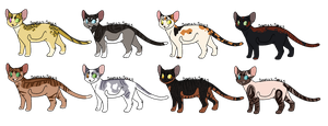 Cat Adopts 16 [1/8 OPEN] by RibbonWren-Adopts