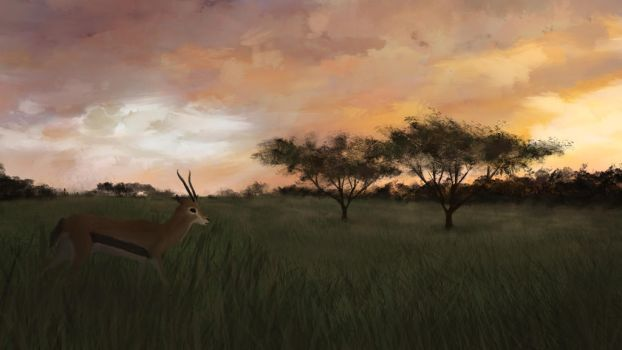 Savanna by Atik1n