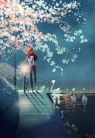 On my way home. by PascalCampion