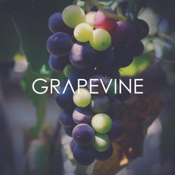 Grapevine by dmaabsta