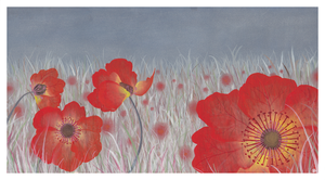 Shirley Poppies by becsketch