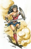 Wonder Woman Commission by RandyGreen