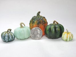 Miniature Pumpkins by Ethereal-Beings