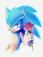 Sonic TH by LeonS-7