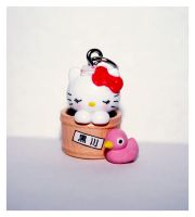 Kitty with the little pink duck by bhere
