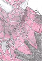 Spider-Man drawing by BroodjeKipkorn