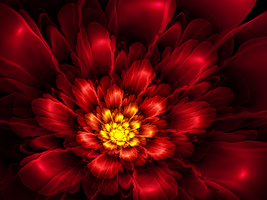 Ribbon-Striped Passion Flora by Flockling