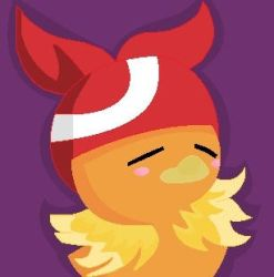 Torchic Wearing May's hat by CartoonistNerd