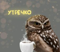 Morning and Owl ) by Anarhia-2013